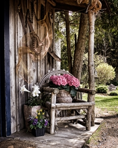 Picture Prompt: Front Porch