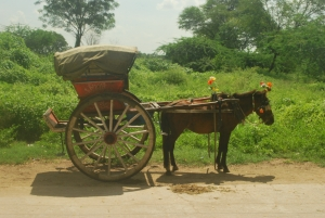 Picture Prompt: Temple Cart & Horse